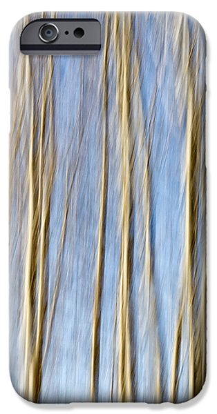 birch trees iPhone Case by Stylianos Kleanthous