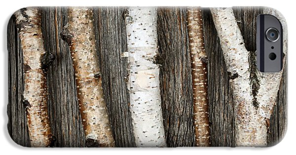 Board iPhone Cases - Birch trunks iPhone Case by Elena Elisseeva
