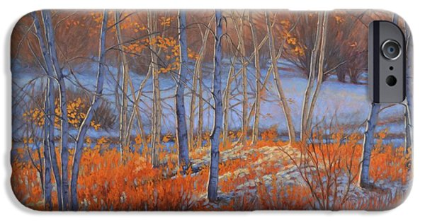 Chicago Paintings iPhone Cases - Birches in First Snow 2 iPhone Case by Fiona Craig