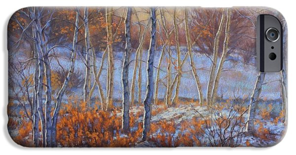 Fall Scenes iPhone Cases - Birches in First Snow iPhone Case by Fiona Craig