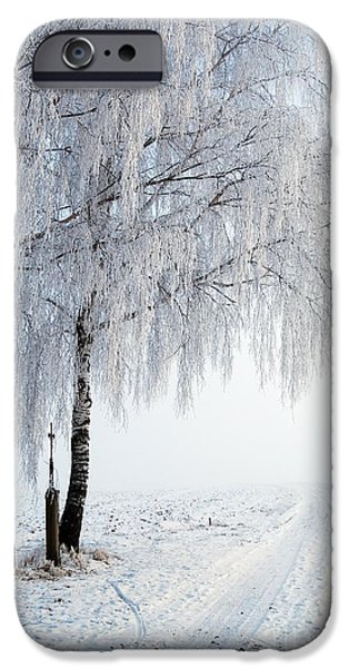 Wayside Cross iPhone Cases - Birches With Wayside Cross iPhone Case by Karin Stein