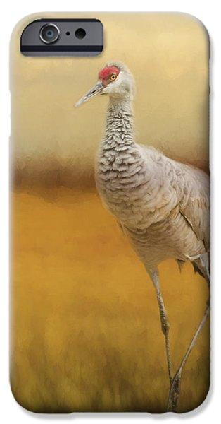 Blackstone River iPhone Cases - Bird Art - A Quiet Walk iPhone Case by Jordan Blackstone