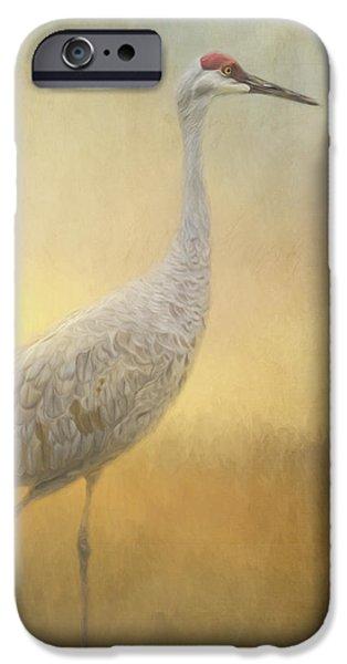 Blackstone River iPhone Cases - Bird Art - Walking Away iPhone Case by Jordan Blackstone