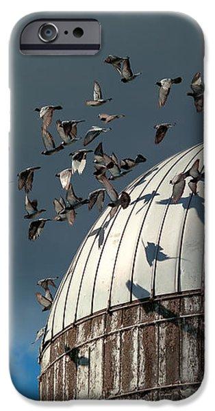 Bird - BIRDS iPhone Case by Mike Savad