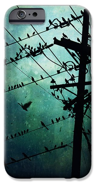 Electrical iPhone Cases - Bird City iPhone Case by Trish Mistric