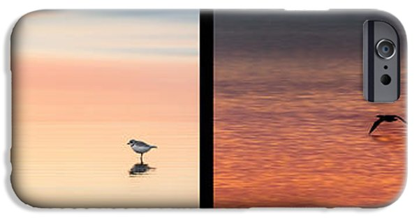 Minimalism iPhone Cases - Bird Collage iPhone Case by Bill  Wakeley
