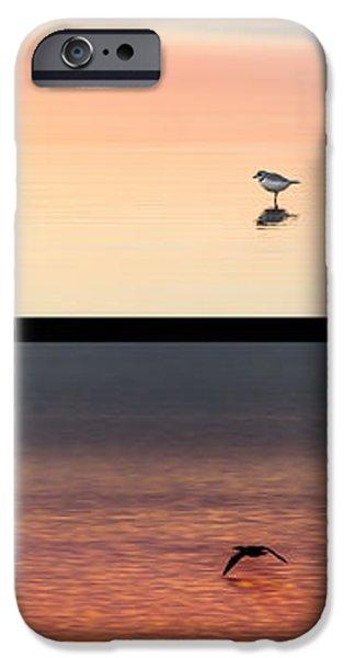 Mockingbird iPhone Cases - Bird Collage Portrait iPhone Case by Bill  Wakeley