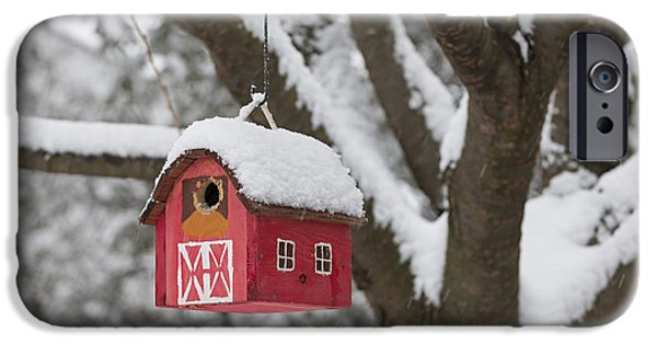 Birdhouse iPhone Cases - Bird house on tree in winter iPhone Case by Elena Elisseeva