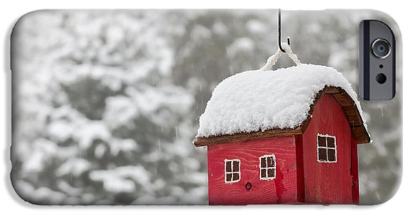 Feed iPhone Cases - Bird house with snow in winter iPhone Case by Elena Elisseeva