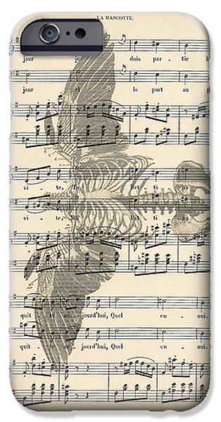 Nature Study iPhone Cases - Bird Music iPhone Case by Nomad Art And  Design