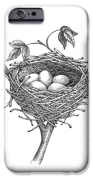 Detail Drawings iPhone Cases - Bird Nest iPhone Case by Christy Beckwith