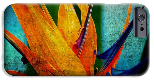 Yellow Bird Of Paradise iPhone Cases - Bird of Paradise Flower 1 iPhone Case by Susanne Van Hulst