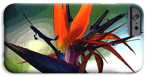 Yellow Bird Of Paradise iPhone Cases - Bird of Paradise Flower Fragrance iPhone Case by Susanne Van Hulst