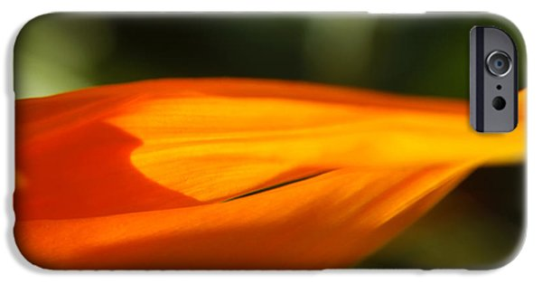 Yellow Bird Of Paradise iPhone Cases - Bird of Paradise Flower Petals Macro iPhone Case by Anna Lisa Yoder