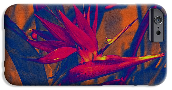 Yellow Bird Of Paradise iPhone Cases - Bird of Paradise Flower iPhone Case by Susanne Van Hulst