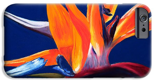 Nature Abstracts Pastels iPhone Cases - Bird of Paradise iPhone Case by Mary Benke