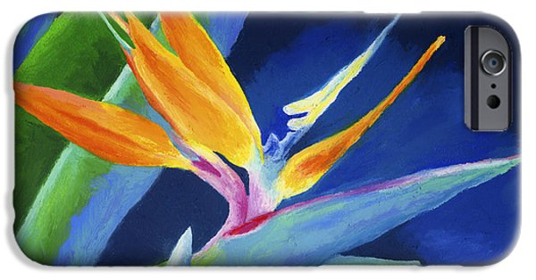Pastel Paintings iPhone Cases - Bird of Paradise iPhone Case by Stephen Anderson