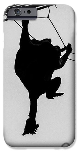 Bird on a Wire iPhone Case by Dean Harte