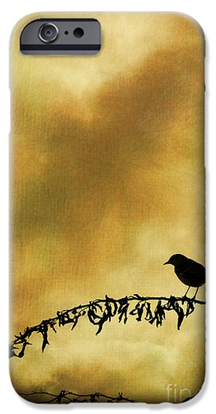 Bird On Branch Montage iPhone Case by David Gordon