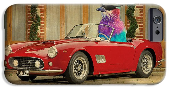 Posters On Mixed Media iPhone Cases - Bird on Ferrari 250 GT SWB California Spyder 1960 iPhone Case by Pablo Franchi