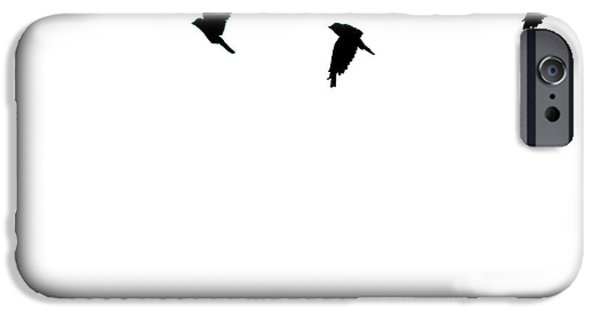 Animals Photographs iPhone Cases - Bird Shadows iPhone Case by Martin Newman