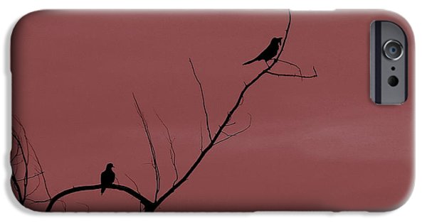 Birds On Limbs iPhone Cases - Bird Silhouette 13 iPhone Case by Cathy Lindsey