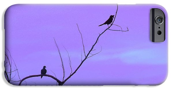Birds On Limbs iPhone Cases - Bird Silhouette 4 iPhone Case by Cathy Lindsey