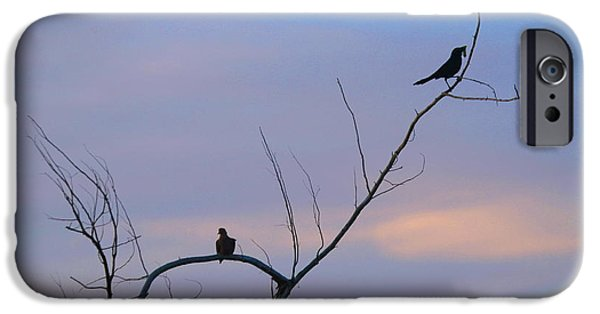 Birds On Limbs iPhone Cases - Bird Silhouette 5 iPhone Case by Cathy Lindsey