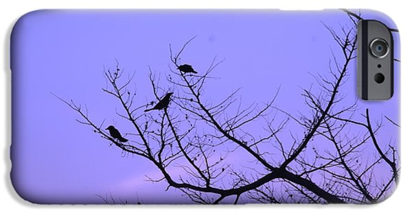 Birds On Limbs iPhone Cases - Bird Silhouette 6  iPhone Case by Cathy Lindsey