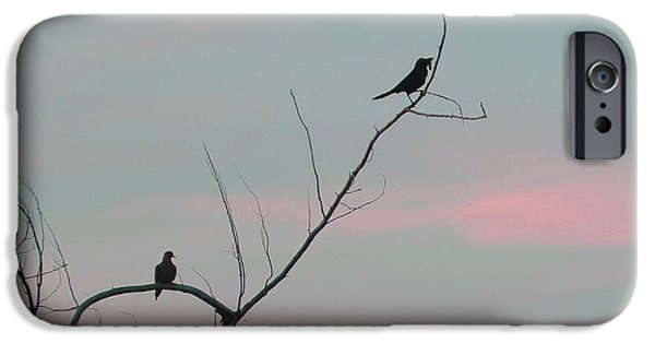 Birds On Limbs iPhone Cases - Bird Silhouette iPhone Case by Cathy Lindsey