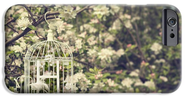 Bird Cage iPhone Cases - Birdcage In Blossom iPhone Case by Amanda And Christopher Elwell