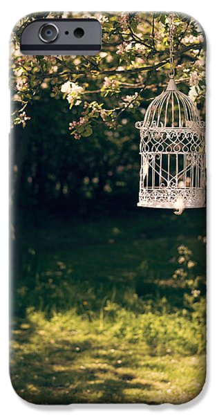 Birdcage iPhone Cases - Birdcage In The Orchard iPhone Case by Amanda And Christopher Elwell