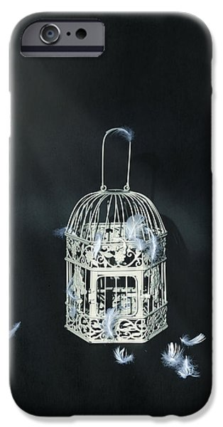 Aviary iPhone Cases - Birdcage iPhone Case by Joana Kruse