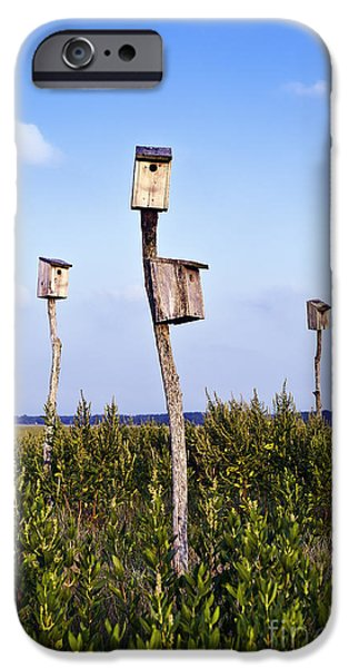 Cape Cod iPhone Cases - Birdhouses in salt marsh. iPhone Case by John Greim
