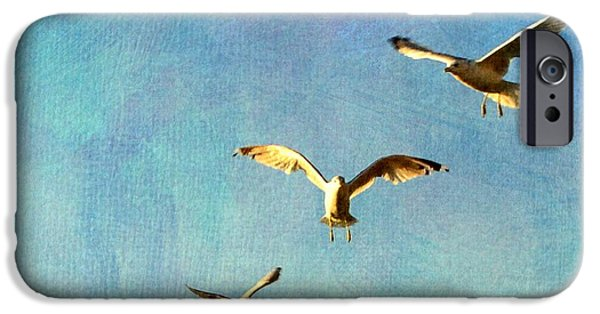 Flying Seagull iPhone Cases - Birds Above iPhone Case by Michelle Calkins
