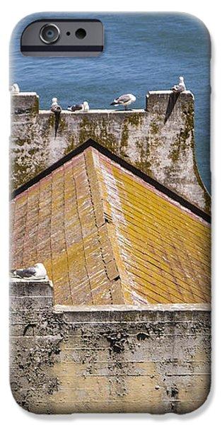 Birds at Alcatraz iPhone Case by John McGraw