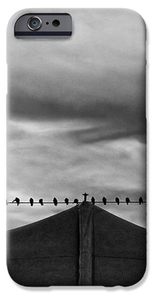 Birds iPhone Case by Bob Orsillo