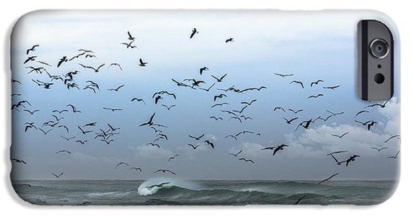Edgar Laureano Photographs iPhone Cases - Birds Fly iPhone Case by Edgar Laureano