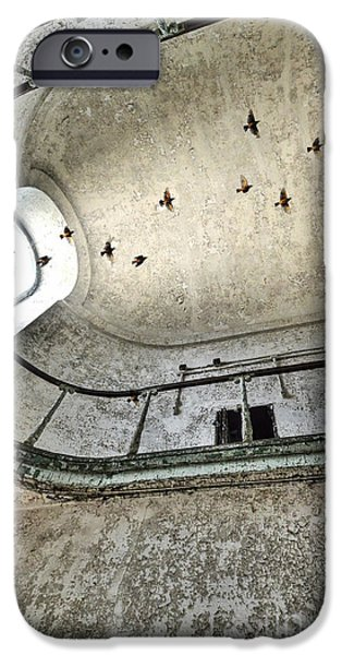 Painted Hall iPhone Cases - Birds Flying Through Open Window in Abandoned Building iPhone Case by Jill Battaglia