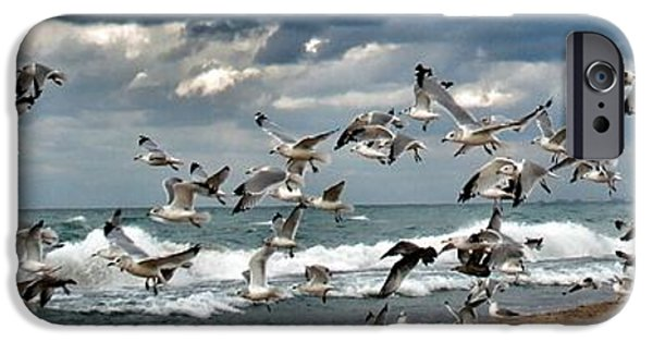 Poetic iPhone Cases - Birds In Flight iPhone Case by Paul Szakacs