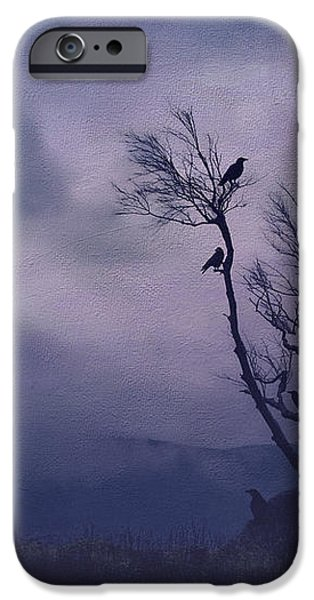 Birds in the Night iPhone Case by Darren Fisher
