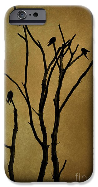 Black Top Digital Art iPhone Cases - Birds in Tree iPhone Case by David Gordon