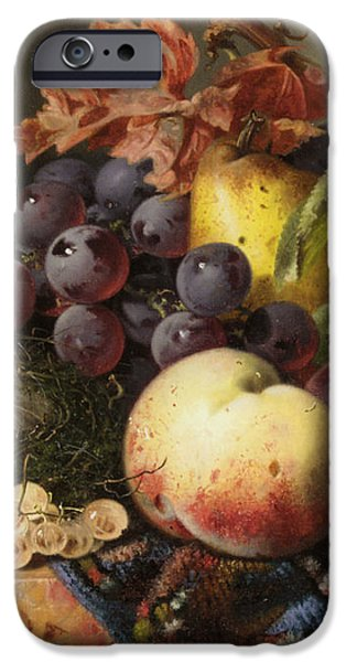Birds Nest Butterfly And Fruit Basket iPhone Case by Edward Ladell