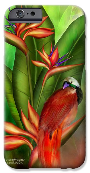 Giclee Mixed Media iPhone Cases - Birds Of Paradise iPhone Case by Carol Cavalaris