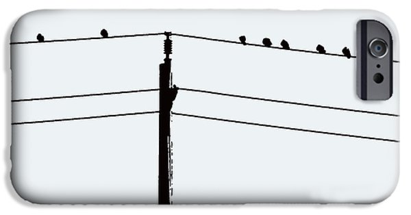 Electrical iPhone Cases - Birds on a Wire iPhone Case by Nina Silver