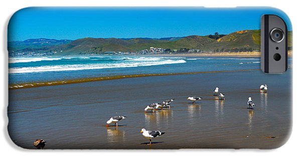 Seagull iPhone Cases - Birds On The Beach Morro Bay California iPhone Case by Barbara Snyder