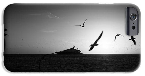 Sailing iPhone Cases - Birds over the ocean iPhone Case by Celso Diniz