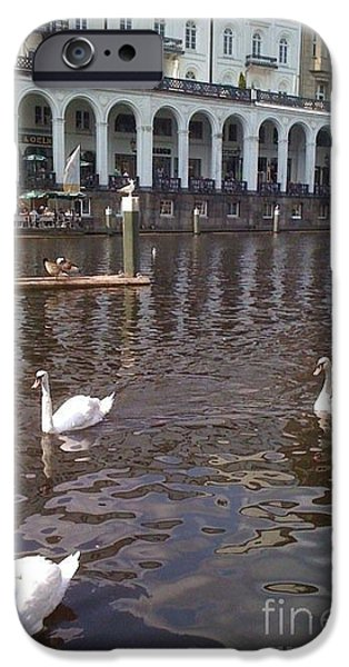 Swans... Pyrography iPhone Cases - Hamburg Germany Swans iPhone Case by Sherri Durrell