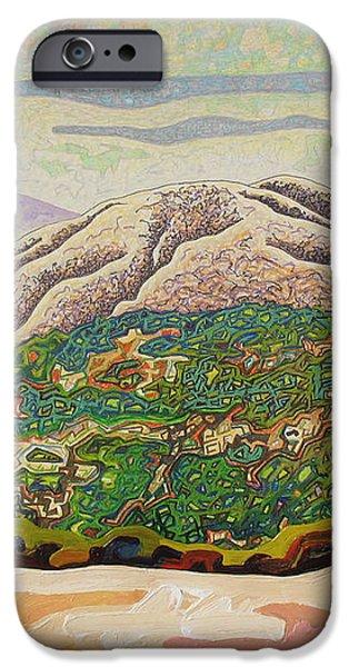 Birdseye landscape #4 iPhone Case by Dale Beckman