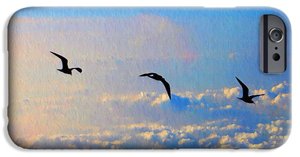 Flying Seagull iPhone Cases - Birdz iPhone Case by Bill Cannon